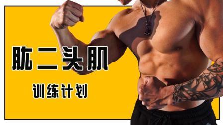想练出充满男友力的健壮手臂, 你必须学会这3个动作!