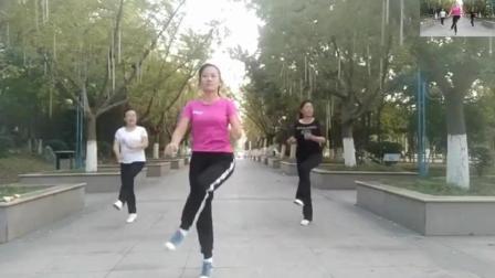 0基础自学 自学老年曳步舞入门教程鬼步舞教学视频