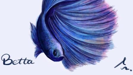 【iPad + Procreate 绘画】《你听我画》第六期 这尾斗鱼