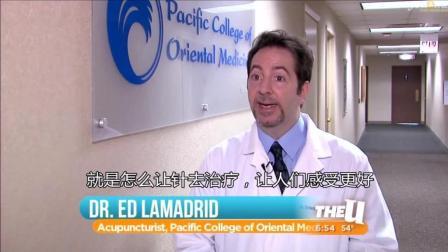 外国针灸师讲述为什么热爱自己的职业