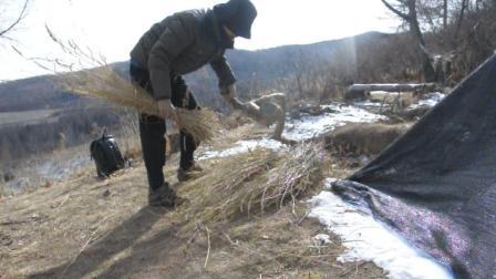 东北野外: 利用干草做垫子, 躺在上面感觉真不错!