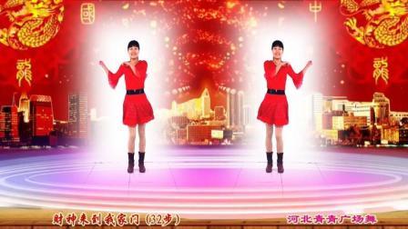 河北青青广场舞《财神来到我家门》32步