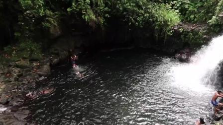 7天造景 密克罗尼西亚波纳佩岛2 淡黑枝牙虾虎Stiphodon caeruleus