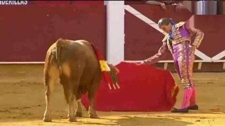 西班牙斗牛, 史上很少见的疯狂女斗牛士, 全场观众为之疯狂!