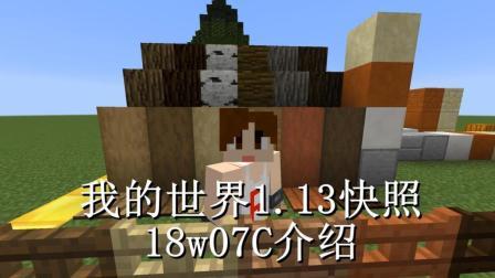 明月庄主我的世界1.13快照18w07C介绍新方块与一些特性