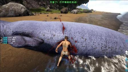 暗墨解说 方舟生存进化仙境传说 60 可以让龙兴奋的枪