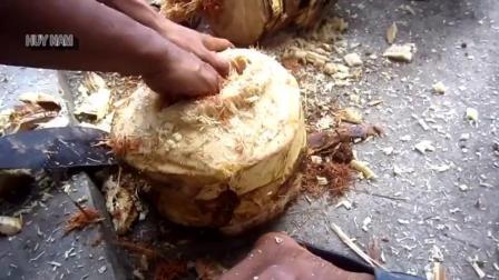 越南男子劈开树干, 找到这些大肥虫, 晚饭有着落了, 真不可思议