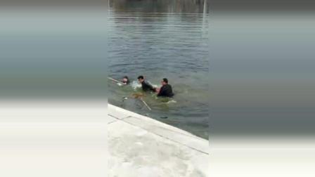 2小孩落水挣扎, 3男子路过跳水营救