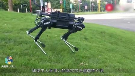 中国90后大学生, 造国产机械狗, 惊艳全世界, 美国重金购买被拒绝