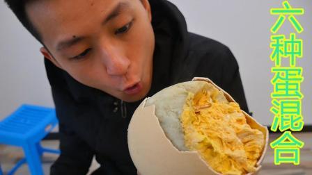 不作会死 2018:把六种蛋混合在鸵鸟蛋里面熬 最后熬出来一个可以吃的工艺品        9.3