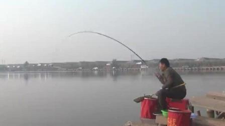 大叔在渔场钓鱼, 旁边的钓友都看呆了, 渔场老板该哭了!