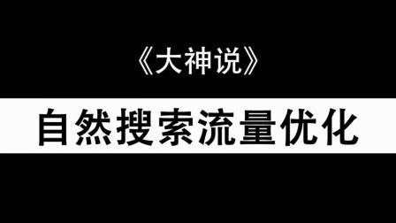 【大神说2018】自然搜索流量优化(18-01-24)