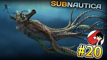 深海迷航丨堕入美丽水世界