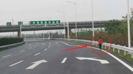 行人闯入高速, 被正常行驶的车撞了, 到底谁负责? 老司机说了实话