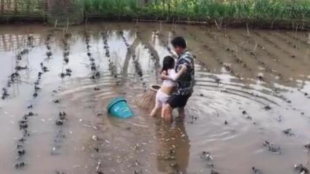 小萝莉陪爸爸在田里捕鱼, 竟然害怕得不敢下水