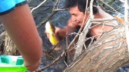 男子在河边发现一个鱼的巢穴, 跳进水里, 徒手把鱼一条条的掏出来