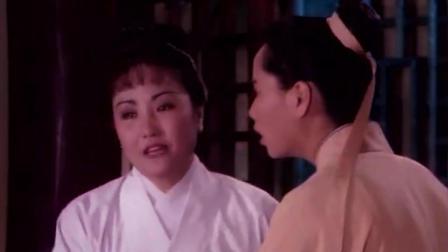 白素贞和小青先后飞出去, 吓呆了许仙姐姐