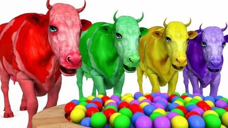 儿童学英语 颜色牛的牛卡通儿童童谣歌 形状兔子动物 胡萝卜卡通童谣歌曲ABC歌曲