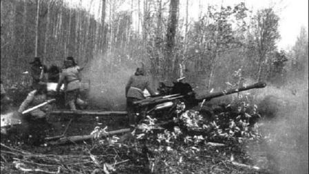 招惹中国炮兵的越军损失有多惨?
