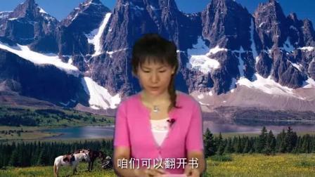 葫芦丝教学初学葫芦丝零基础入门教程葫芦丝教学视频葫芦丝教程.葫芦丝小苹果