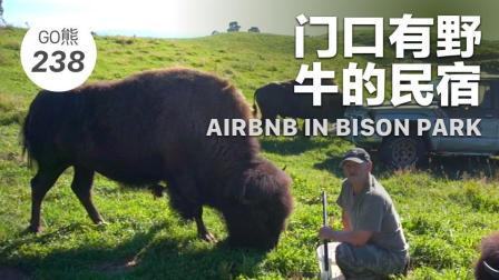 GO熊238 / 门口有野牛的民宿 AIRBNB IN BISON PARK
