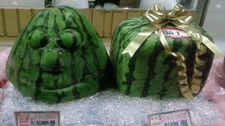 世界上最奇葩的西瓜, 一口吃能吃多个, 土豪才吃的起!