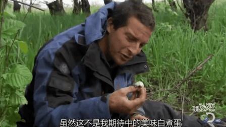不要说贝爷吃不了皮蛋了, 贝爷千禧蛋都吃半熟的!