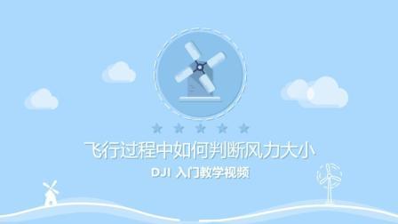 DJI 入门教学视频 - 飞行过程中如何判断风力大小