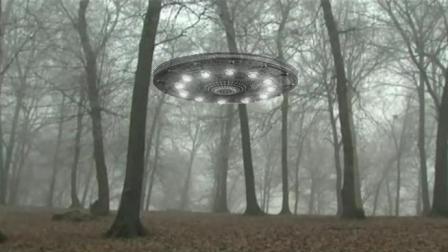 UFO为什么总爱在这个森林出现? 神秘森林至今没科