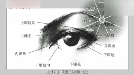 纹绣如何快速设计眉型半永久雾眉纹绣视频纹绣教学视频眉眼形体概述1纹绣眉毛教学视频