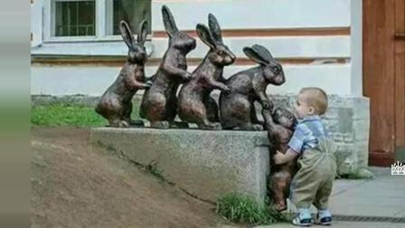 小兔兔 你上不去 我来帮你吧 爆笑