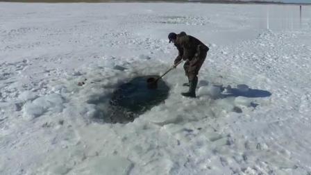 钓鱼: 用力划水, 把冰下的鱼划出来