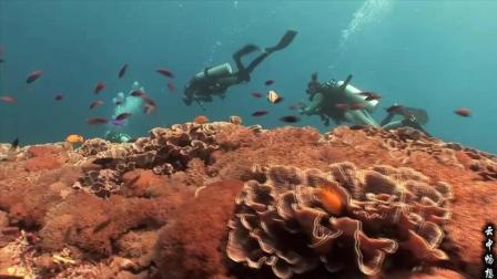 印尼巴厘岛风光: 人间仙境, 潜水者的天堂!