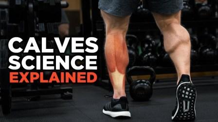 Jeff Nippard - 2018版最科学训练小腿肌肉的方法 - 249