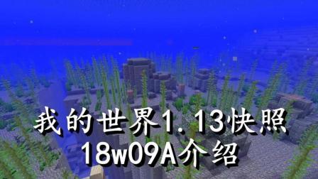 明月庄主我的世界1.13快照18w09a介绍海底遗迹与珊瑚