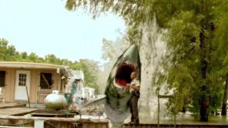 2分钟看《沼泽狂鲨》, 鲨鱼掉进沼泽, 对人类展开疯狂报复!