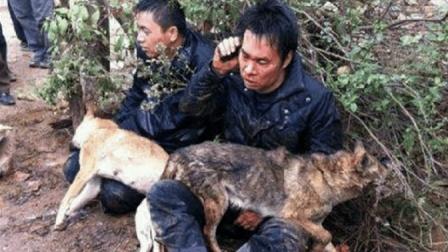 偷狗贼被村民发现后, 谁知还这么猖狂, 结局太惨