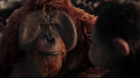 """猿族领袖""""凯撒""""在生命最后一口气之前, 看到族群的希望"""