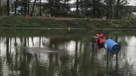 钓鱼, 错选了一个奇葩钓位, 中鱼一抬竿, 发生惊险的一幕