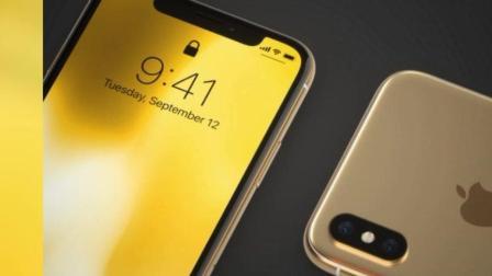 黄金版iPhone X喜欢吗? 下一代可能新增这款色