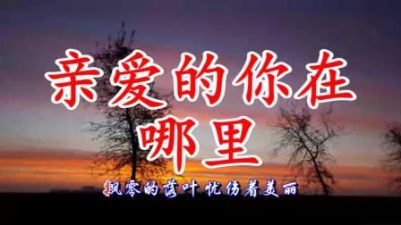 龙飞 门丽一首情歌对唱《亲爱的你在哪里》亲爱的你到底在哪里?