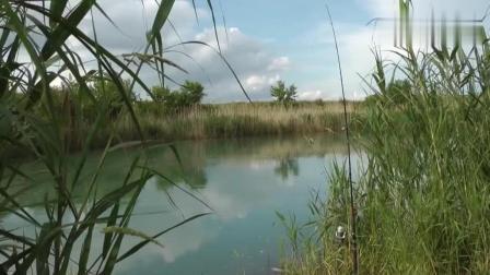 钓鱼: 一看这河的感觉, 就带着有鱼样!