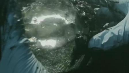 美国惊悚恐怖电影《黑暗弥漫》, 生物学家海底意外发现神秘生物, 打开身躯被吓到了!