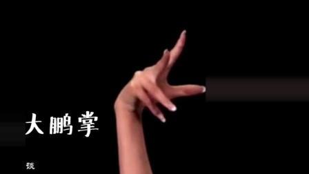 傣族舞基本手形与手位教学演示, 很值得一看