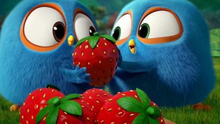 小公鸡为了一个草莓互相争夺好几天, 最后成了好朋友