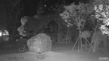 驴友去老屋里探险发现小灰人婴儿 这个是真的吗?
