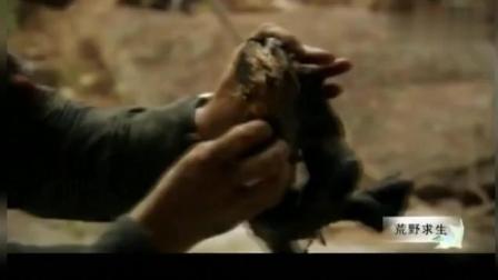 《荒野求生》这黑不溜秋的的什么玩意, 贝爷却吃的他津津有味