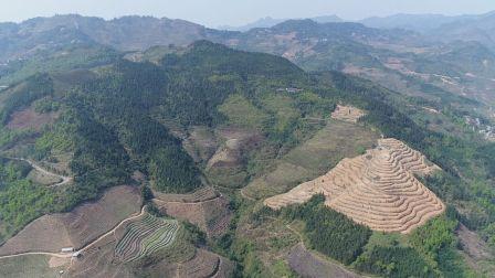 文山州麻栗坡县杨万乡裕广达肉桂产品开发有限公司航拍