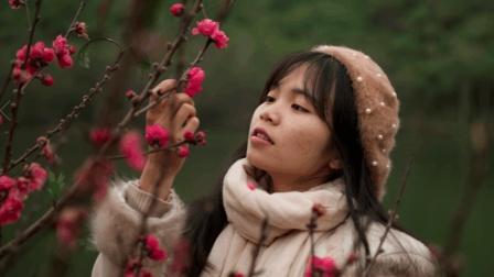 百香湖桃花朵朵开