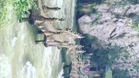 这是中国最大的洞中瀑布 龙门飞瀑